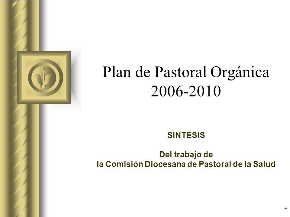 Plan de Pastoral Orgánica 2006-2010