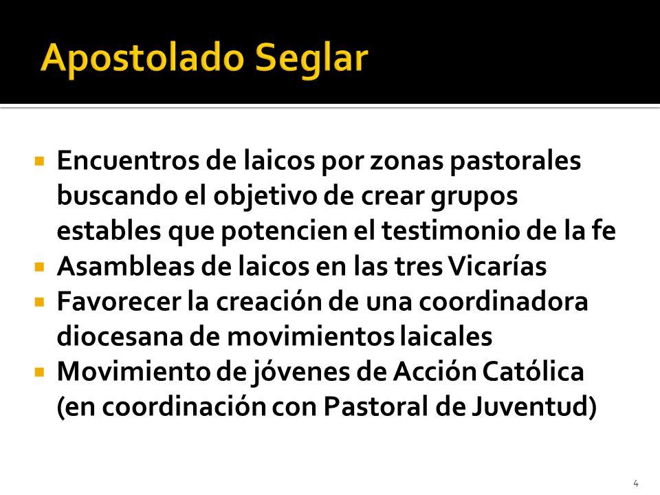 Apostolado Seglar Encuentros de laicos por zonas pastorales buscando el objetivo de crear grupos estables que potencien el testimonio de la fe.