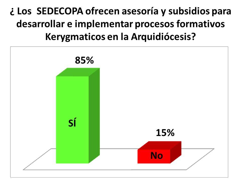 ¿ Los SEDECOPA ofrecen asesoría y subsidios para desarrollar e implementar procesos formativos Kerygmaticos en la Arquidiócesis