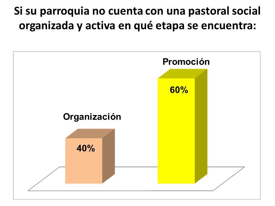 Si su parroquia no cuenta con una pastoral social organizada y activa en qué etapa se encuentra: