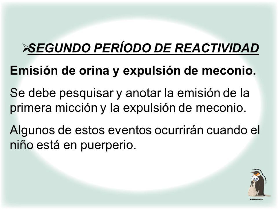 SEGUNDO PERÍODO DE REACTIVIDAD