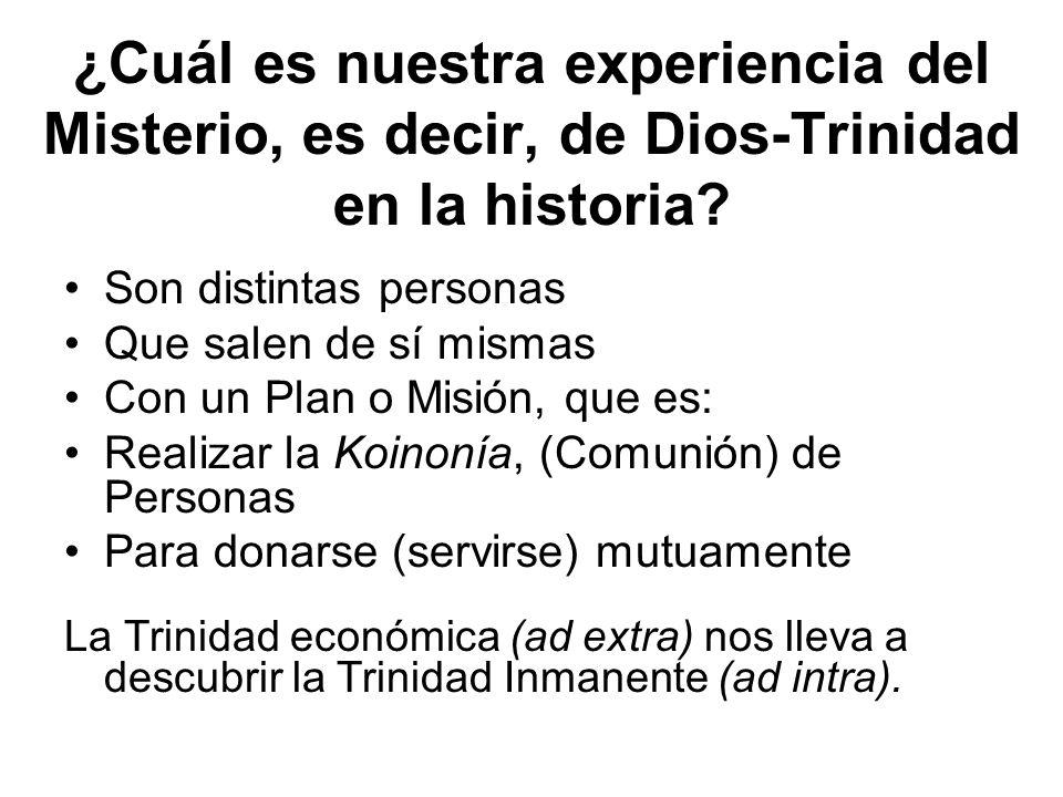 ¿Cuál es nuestra experiencia del Misterio, es decir, de Dios-Trinidad en la historia