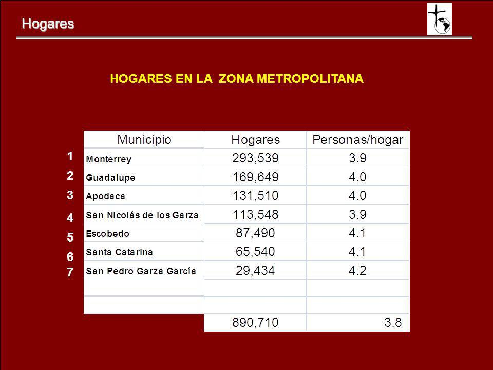 HOGARES EN LA ZONA METROPOLITANA
