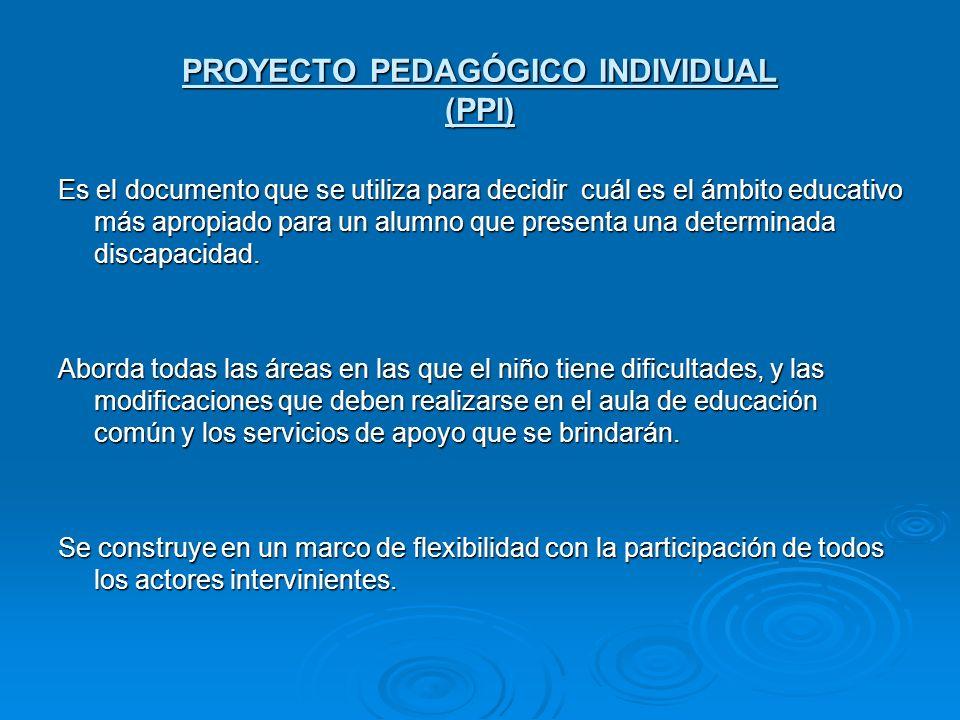 PROYECTO PEDAGÓGICO INDIVIDUAL (PPI)