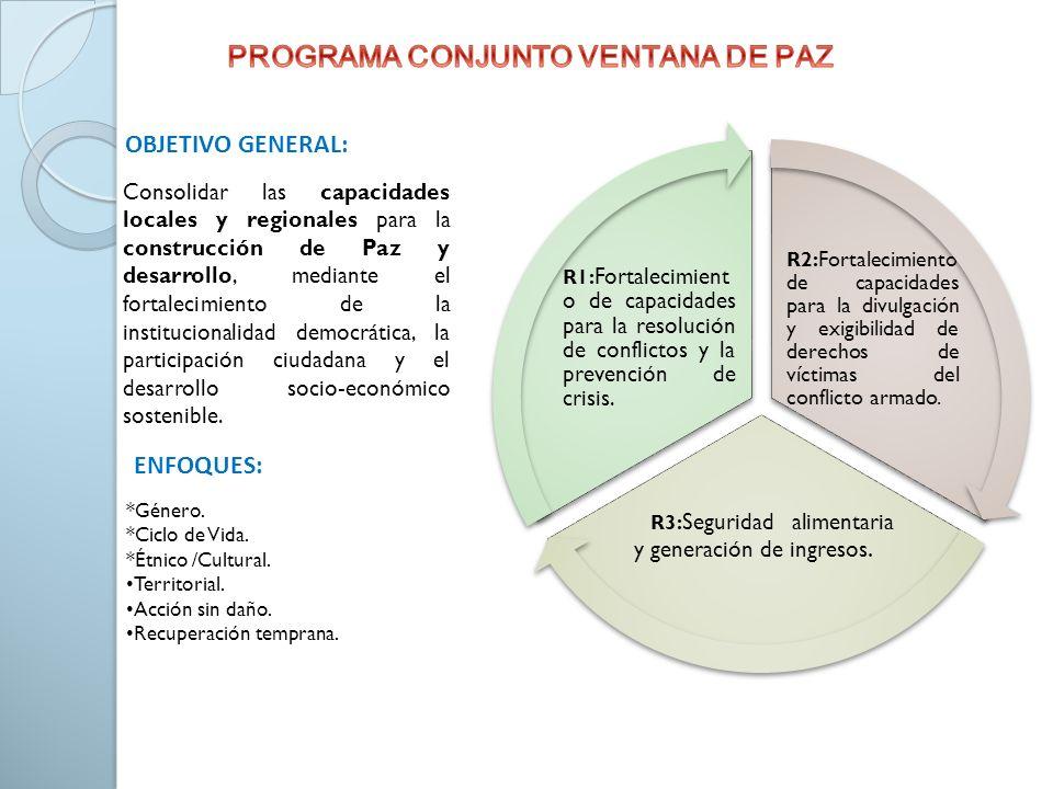 PROGRAMA CONJUNTO VENTANA DE PAZ