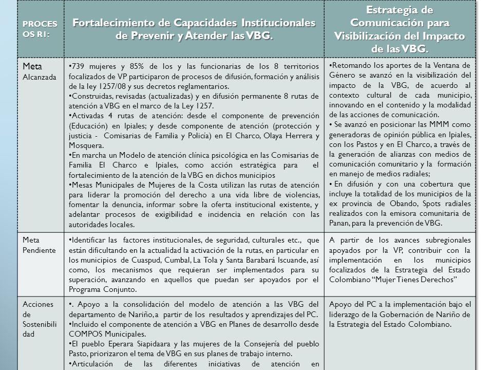 Estrategia de Comunicación para Visibilización del Impacto de las VBG.