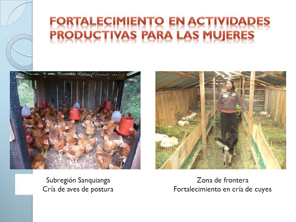 Fortalecimiento en actividades productivas para las mujeres