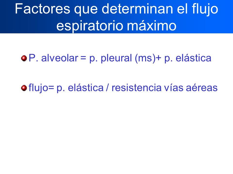 Factores que determinan el flujo espiratorio máximo