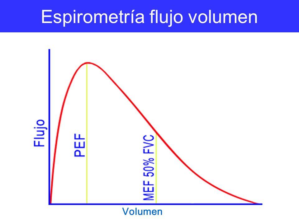 Espirometría flujo volumen