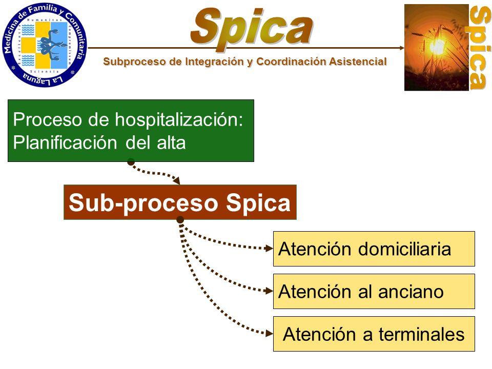 Spica Sub-proceso Spica Proceso de hospitalización: