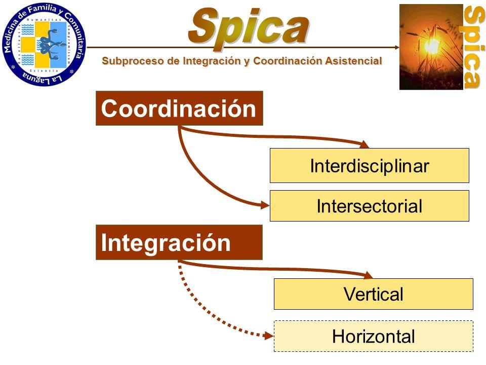 Spica Coordinación Integración Interdisciplinar Intersectorial