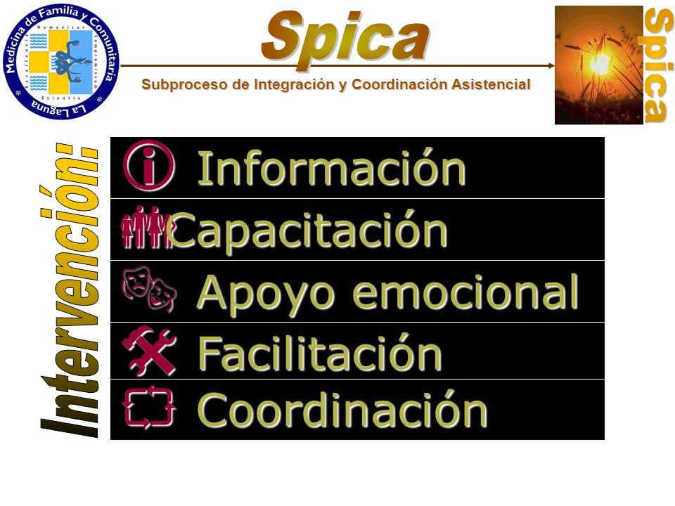 Información Capacitación Apoyo emocional Facilitación Coordinación