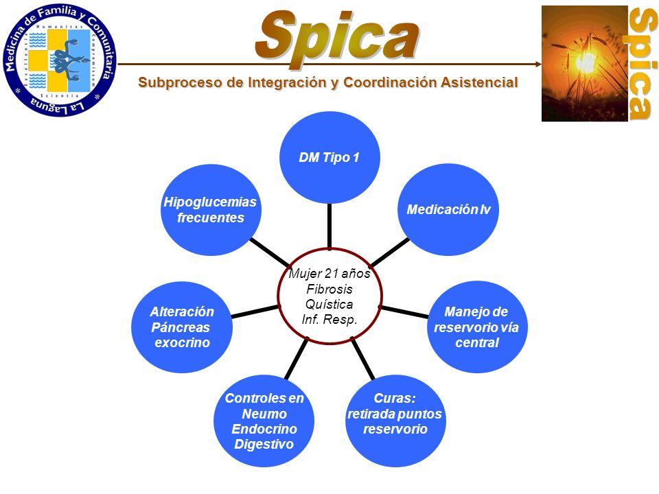 Spica Subproceso de Integración y Coordinación Asistencial