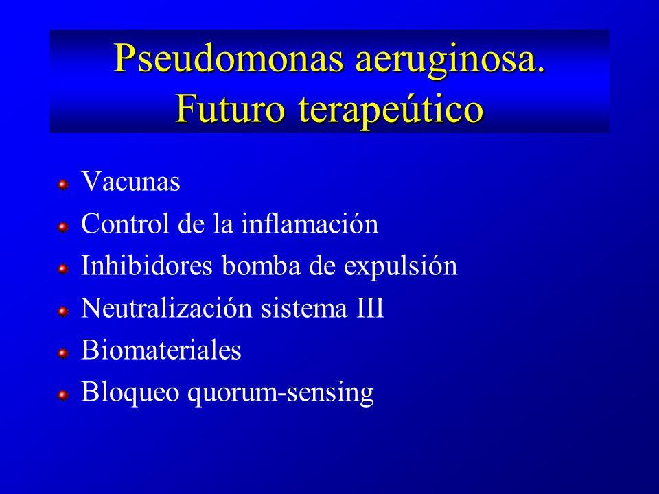 Pseudomonas aeruginosa. Futuro terapeútico