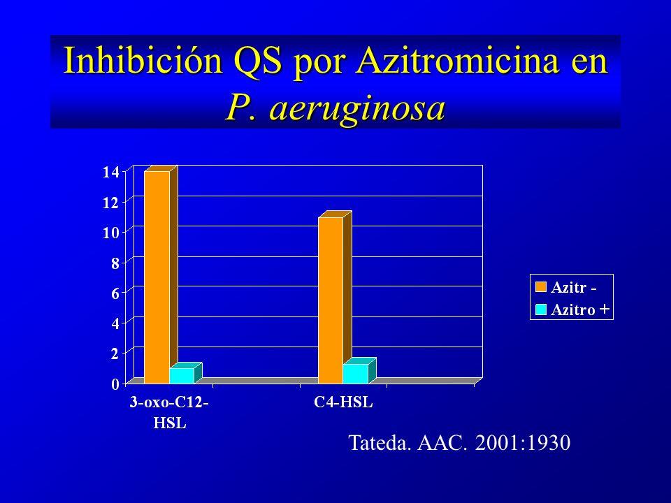 Inhibición QS por Azitromicina en P. aeruginosa