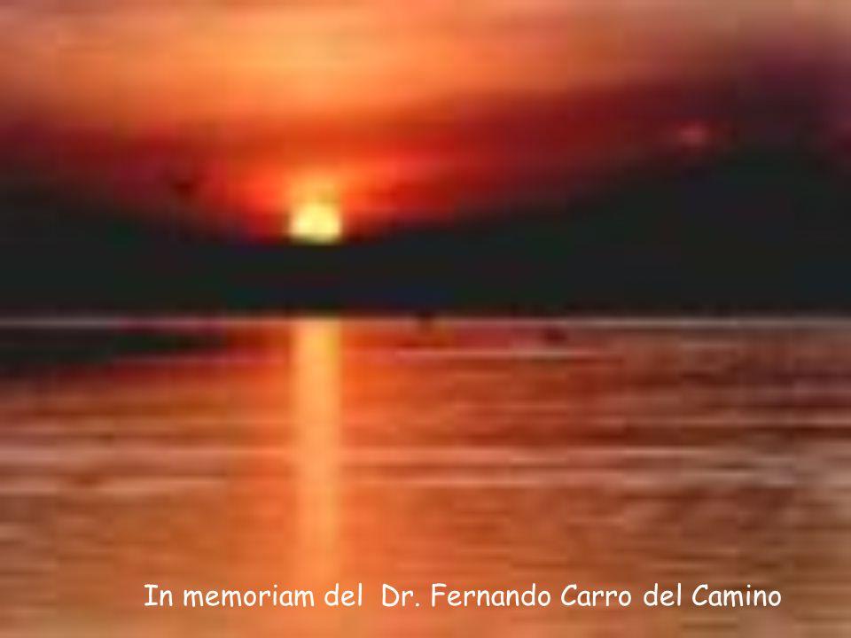 In memoriam del Dr. Fernando Carro del Camino