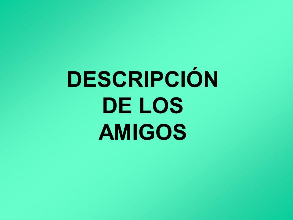 DESCRIPCIÓN DE LOS AMIGOS