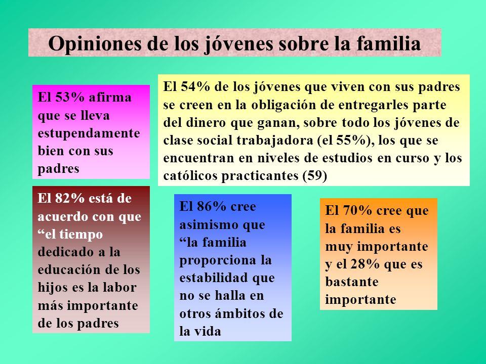 Opiniones de los jóvenes sobre la familia