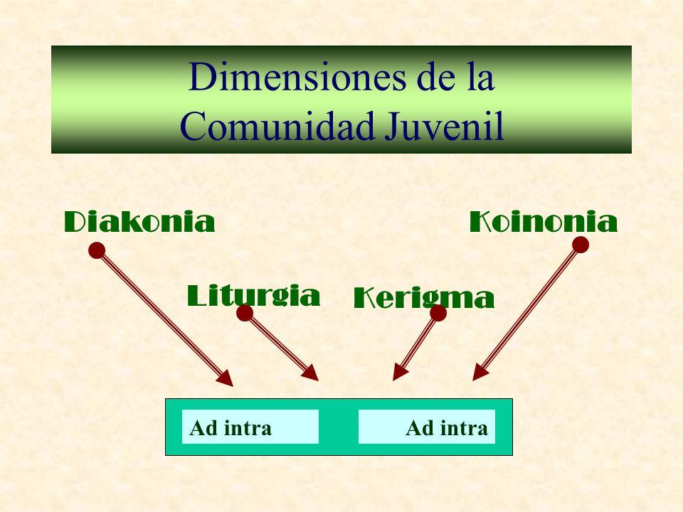 Dimensiones de la Comunidad Juvenil