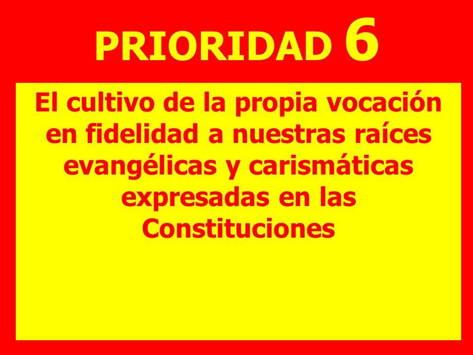 PRIORIDAD 6 El cultivo de la propia vocación en fidelidad a nuestras raíces evangélicas y carismáticas expresadas en las Constituciones.