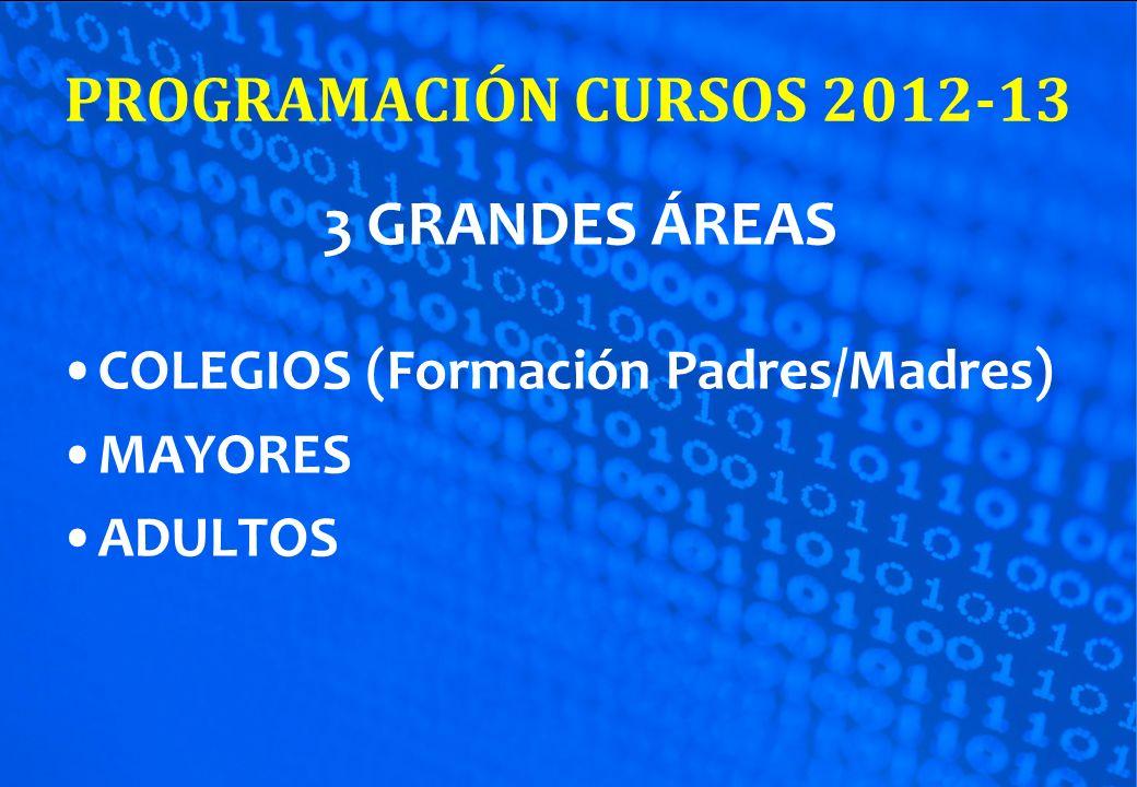 PROGRAMACIÓN CURSOS 2012-13 3 GRANDES ÁREAS