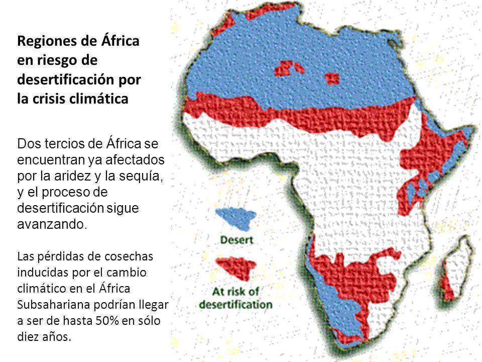 Regiones de África en riesgo de desertificación por la crisis climática