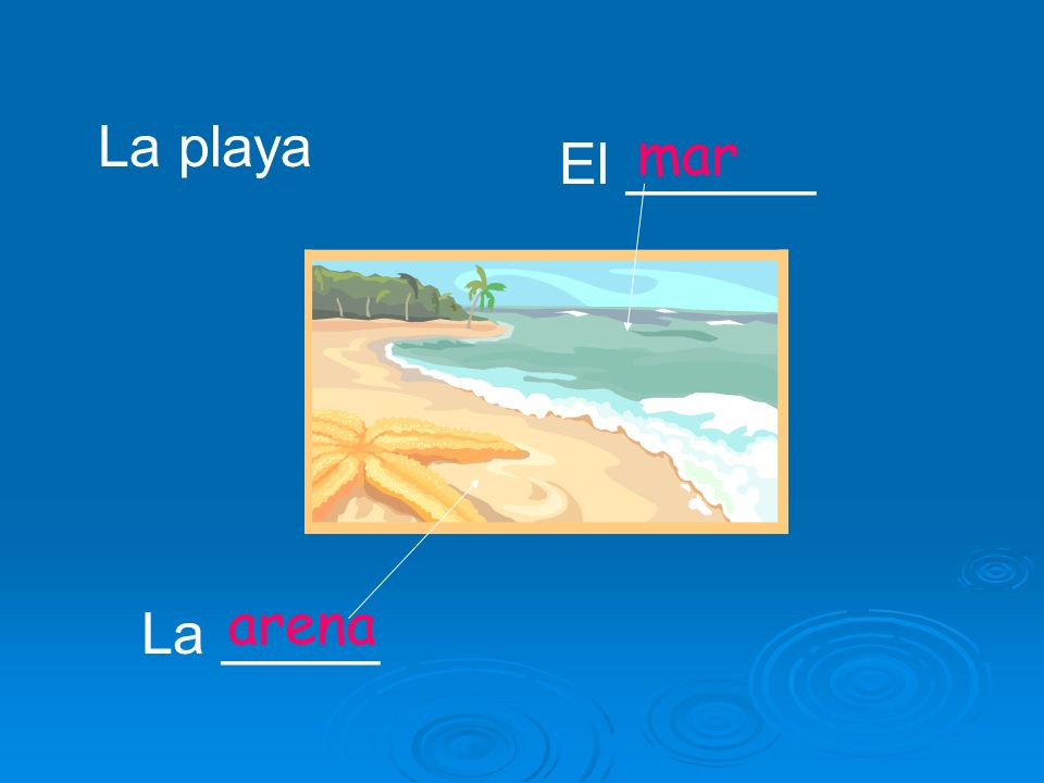 La playa mar El ______ arena La _____