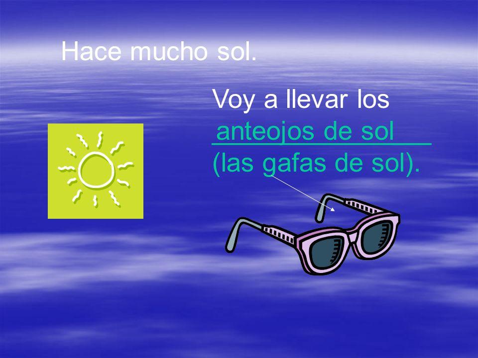 Hace mucho sol. Voy a llevar los _______________ (las gafas de sol). anteojos de sol