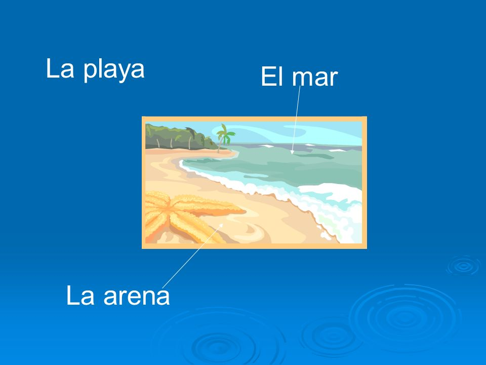 La playa El mar La arena
