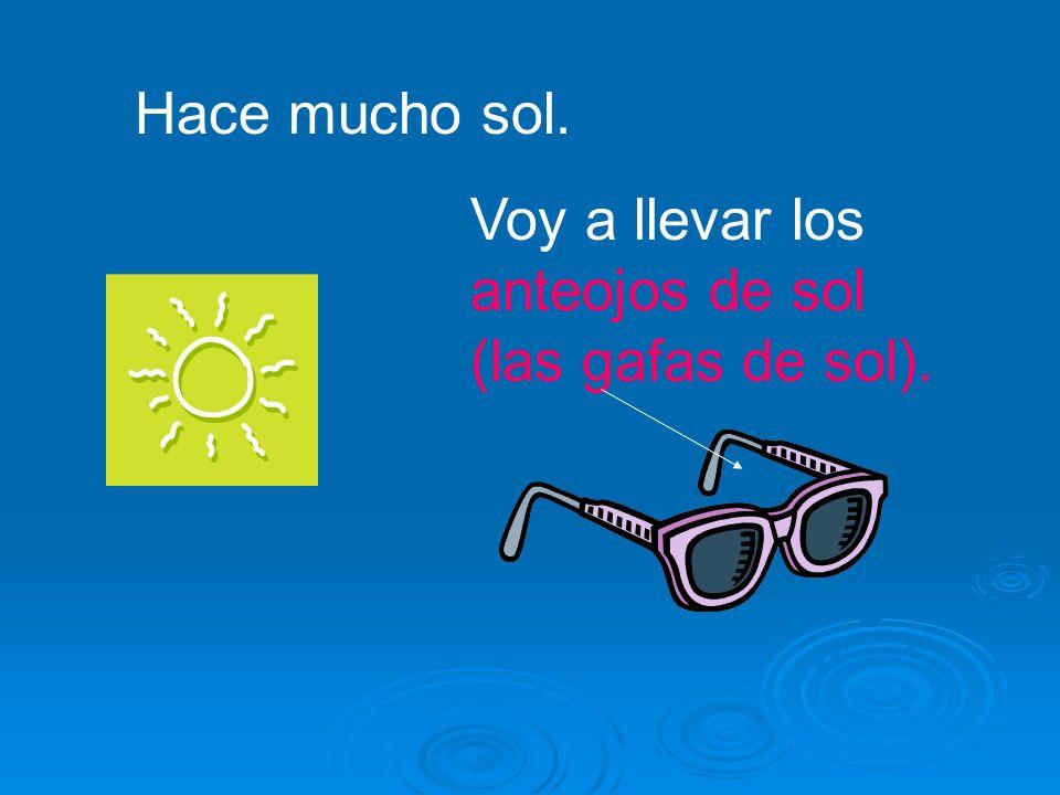 Hace mucho sol. Voy a llevar los anteojos de sol (las gafas de sol).