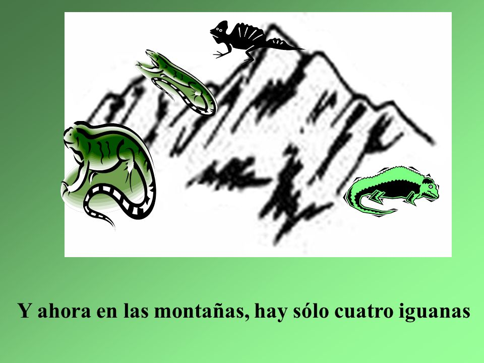 Y ahora en las montañas, hay sólo cuatro iguanas