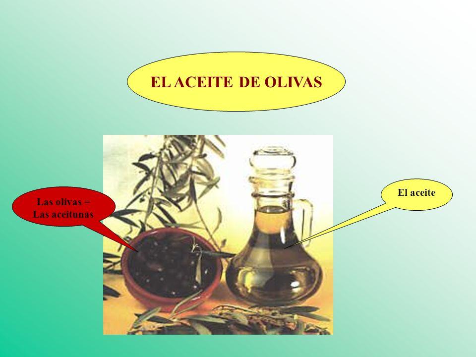 EL ACEITE DE OLIVAS El aceite Las olivas = Las aceitunas