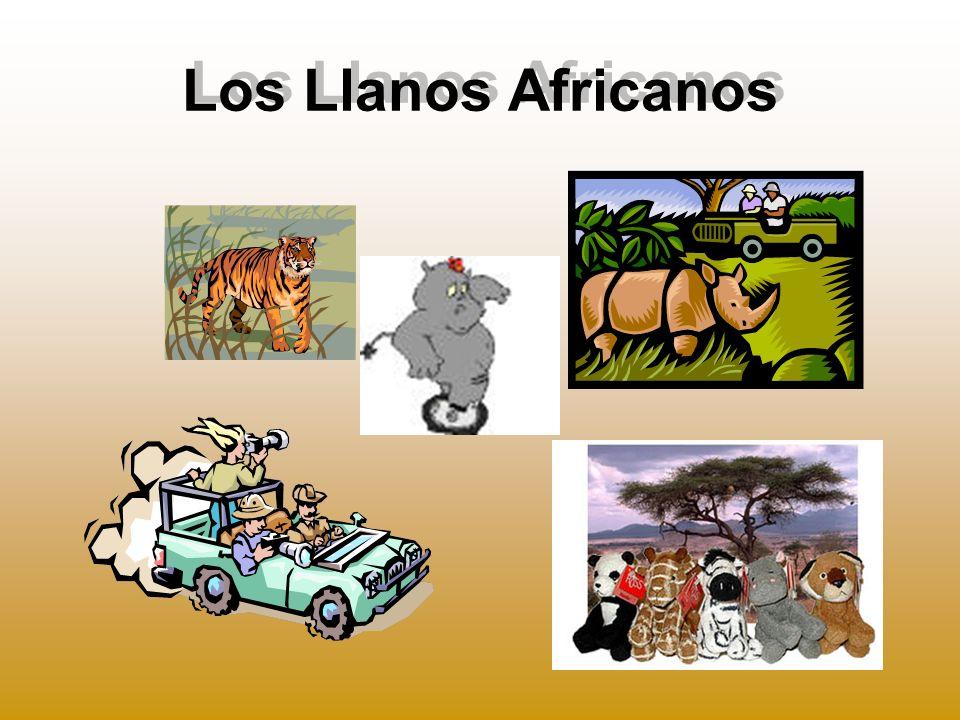 Los Llanos Africanos