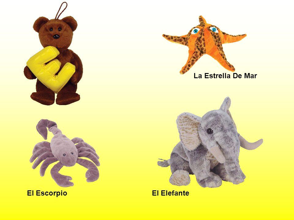 La Estrella De Mar El Escorpio El Elefante