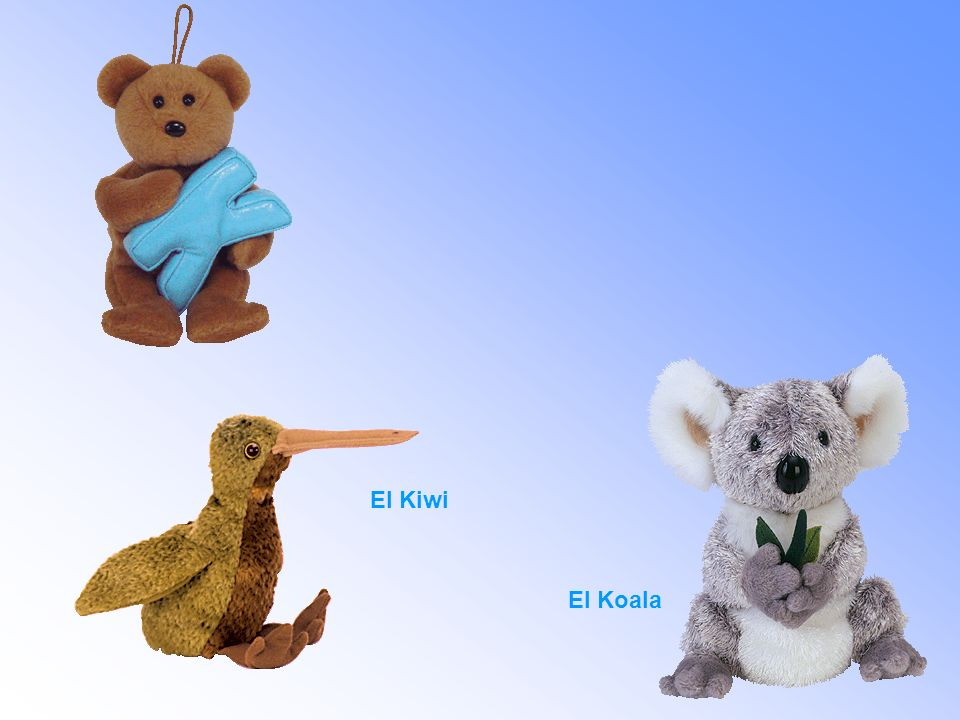 El Kiwi El Koala
