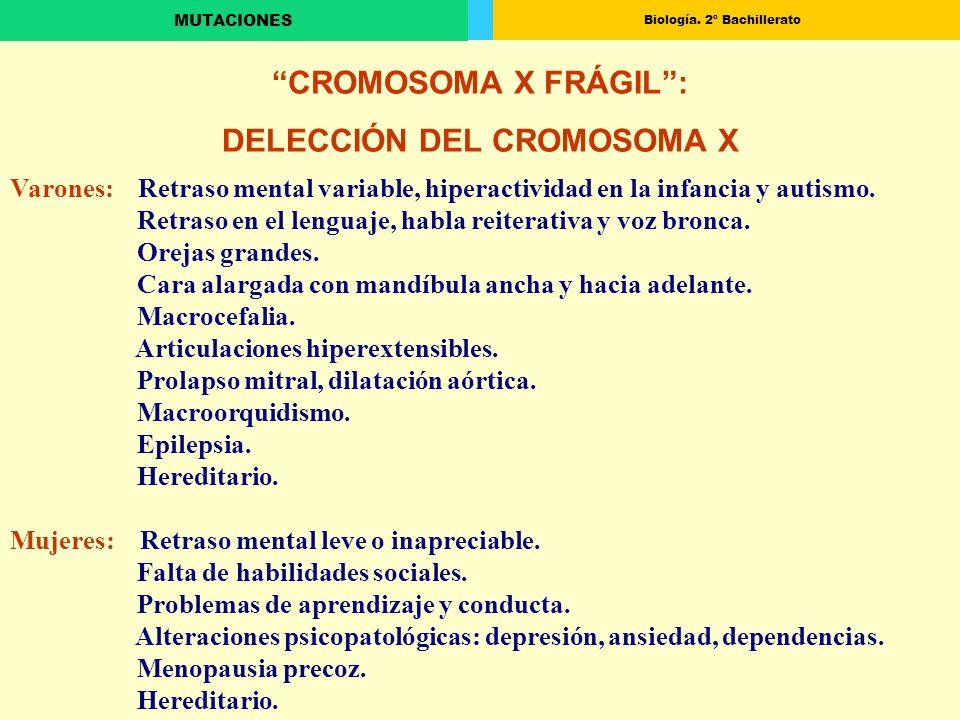 DELECCIÓN DEL CROMOSOMA X