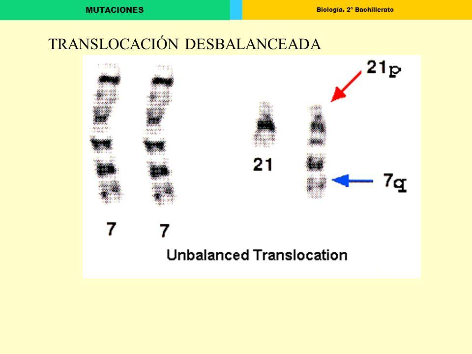 TRANSLOCACIÓN DESBALANCEADA