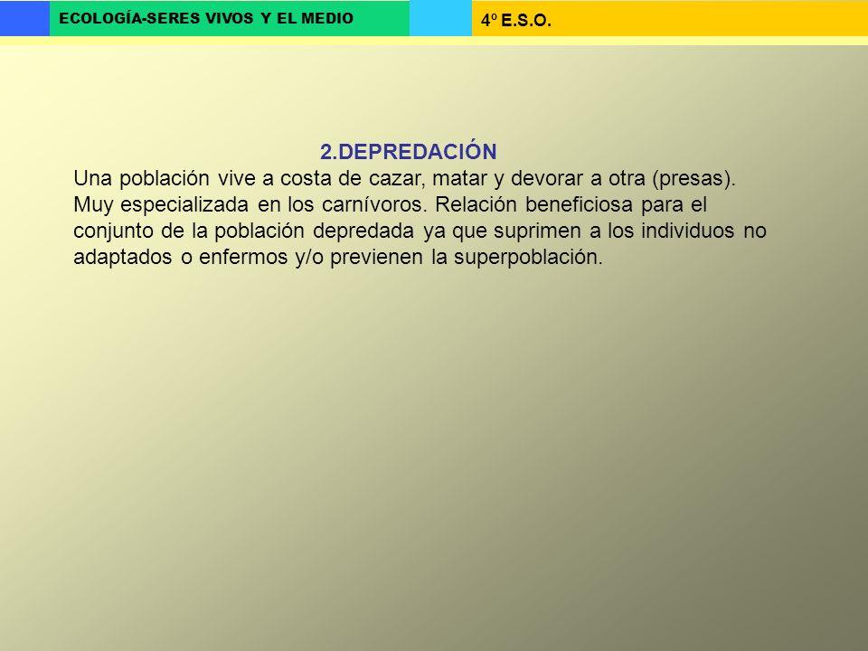 2.DEPREDACIÓN