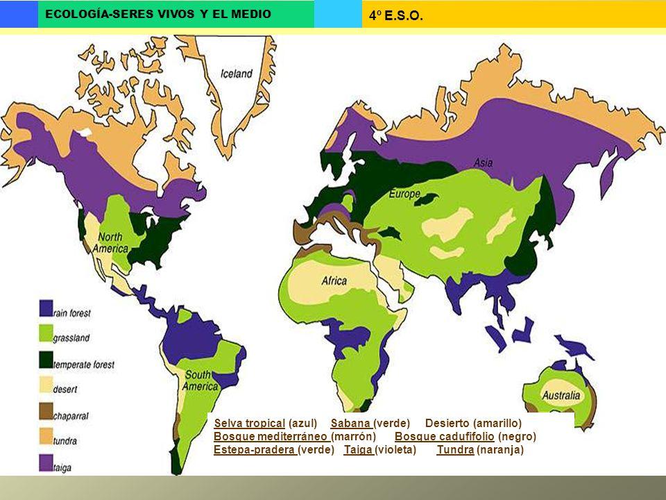 Selva tropical (azul) Sabana (verde) Desierto (amarillo)