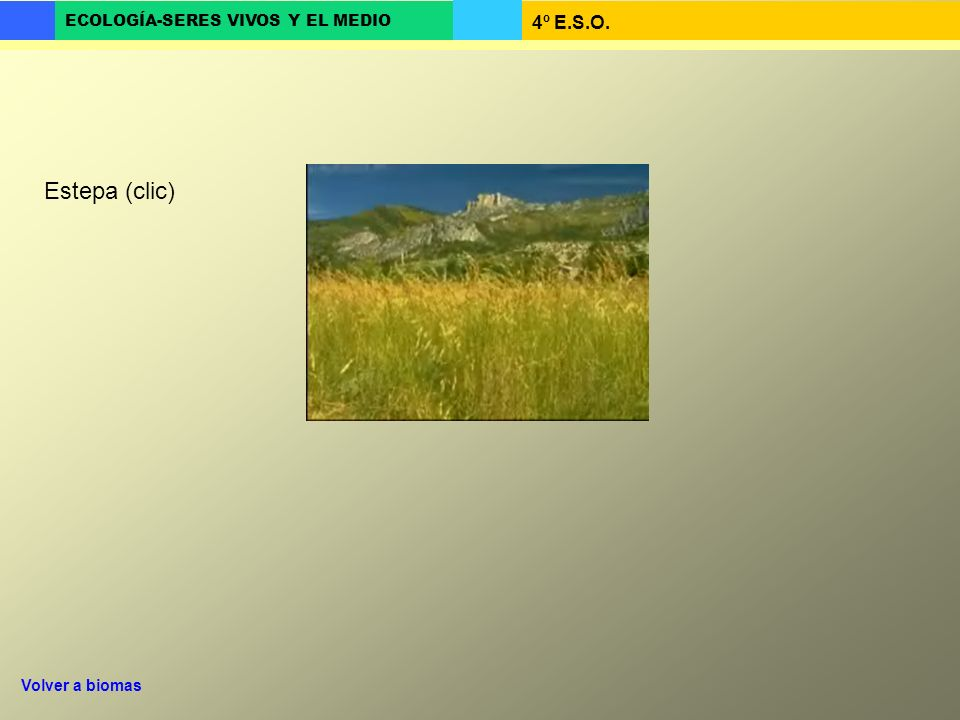 Estepa (clic) Volver a biomas
