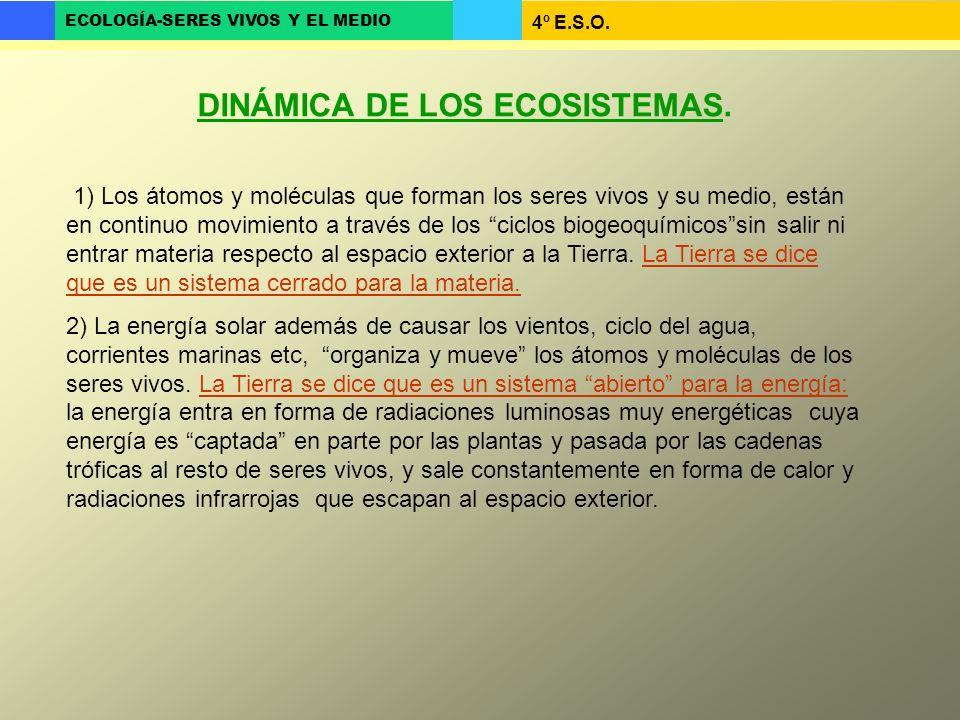 DINÁMICA DE LOS ECOSISTEMAS.