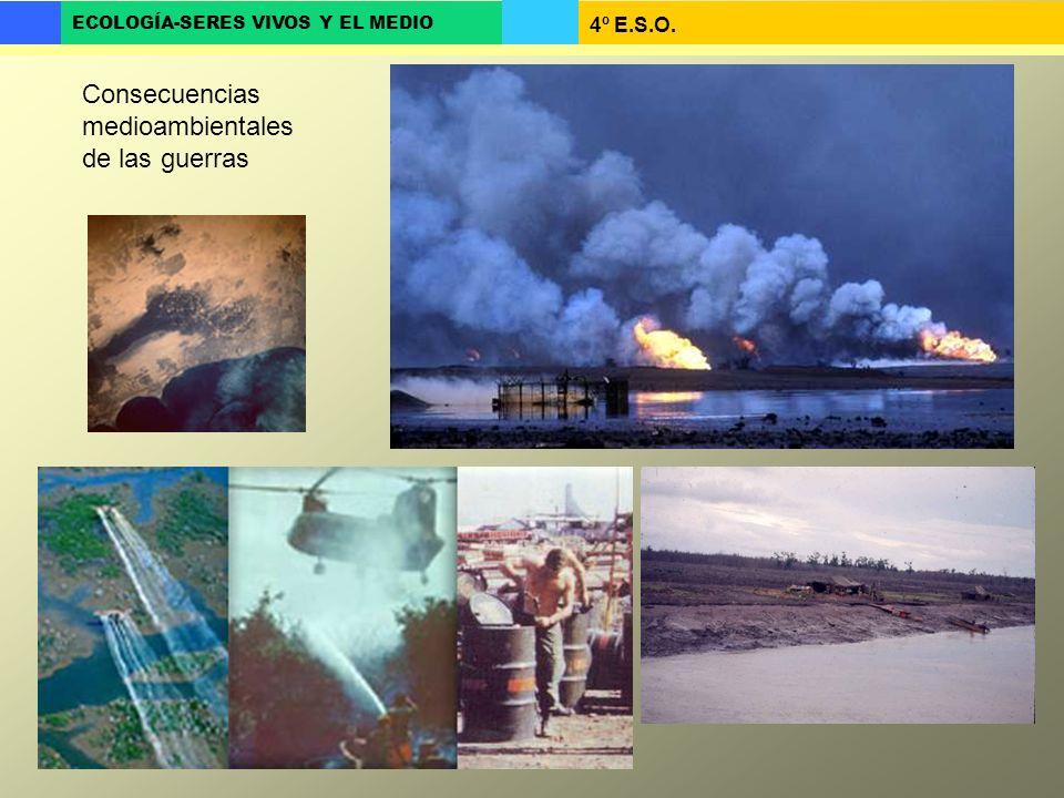 Consecuencias medioambientales de las guerras
