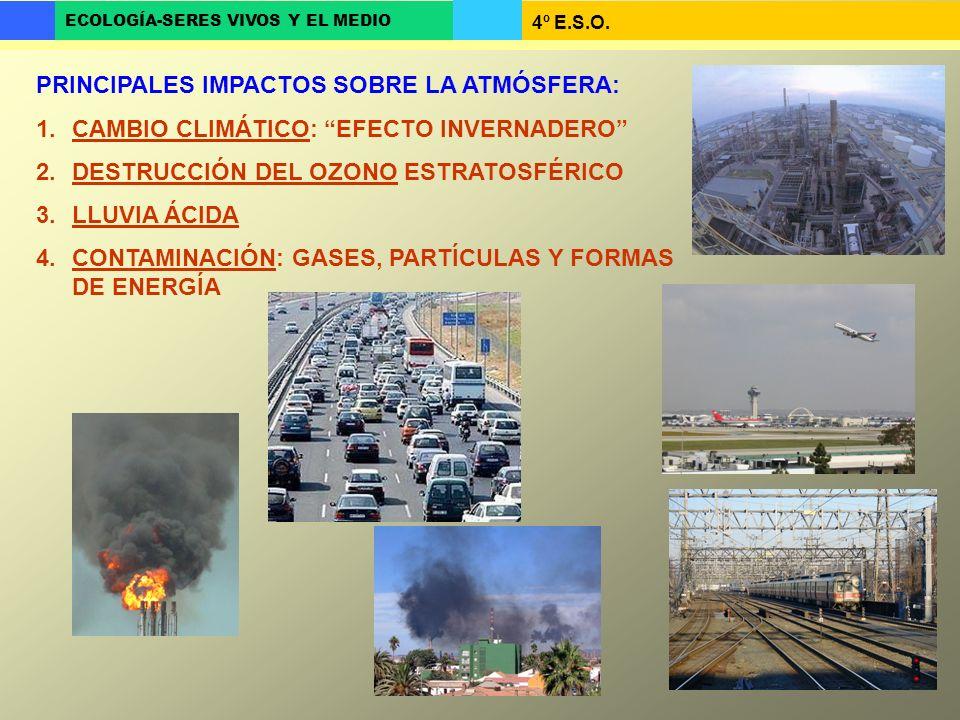 PRINCIPALES IMPACTOS SOBRE LA ATMÓSFERA: