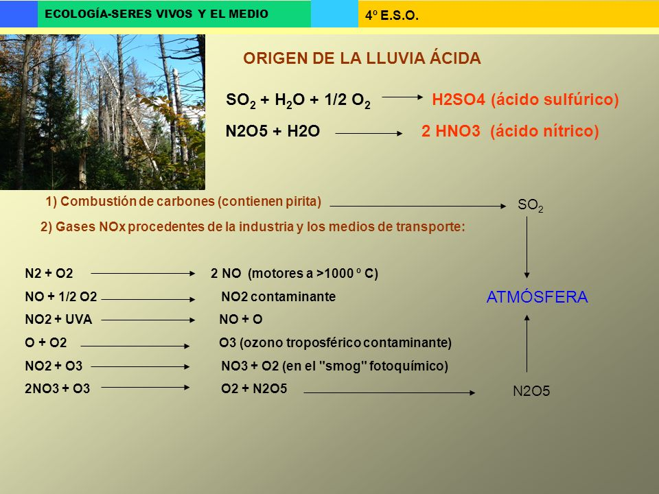 SO2 + H2O + 1/2 O2 H2SO4 (ácido sulfúrico)