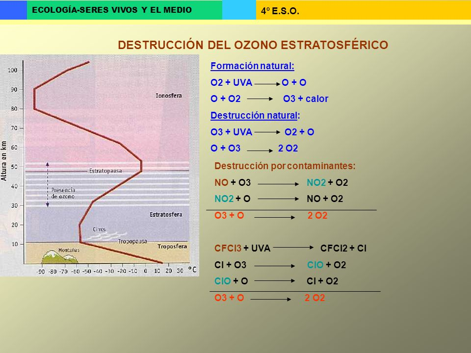 DESTRUCCIÓN DEL OZONO ESTRATOSFÉRICO