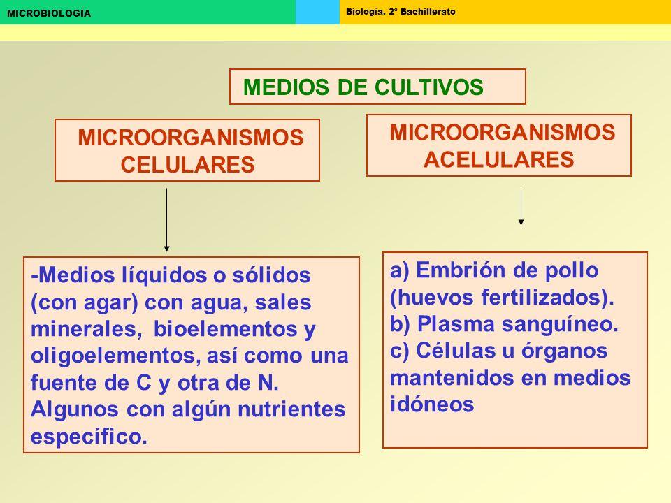 MICROORGANISMOS ACELULARES MICROORGANISMOS CELULARES
