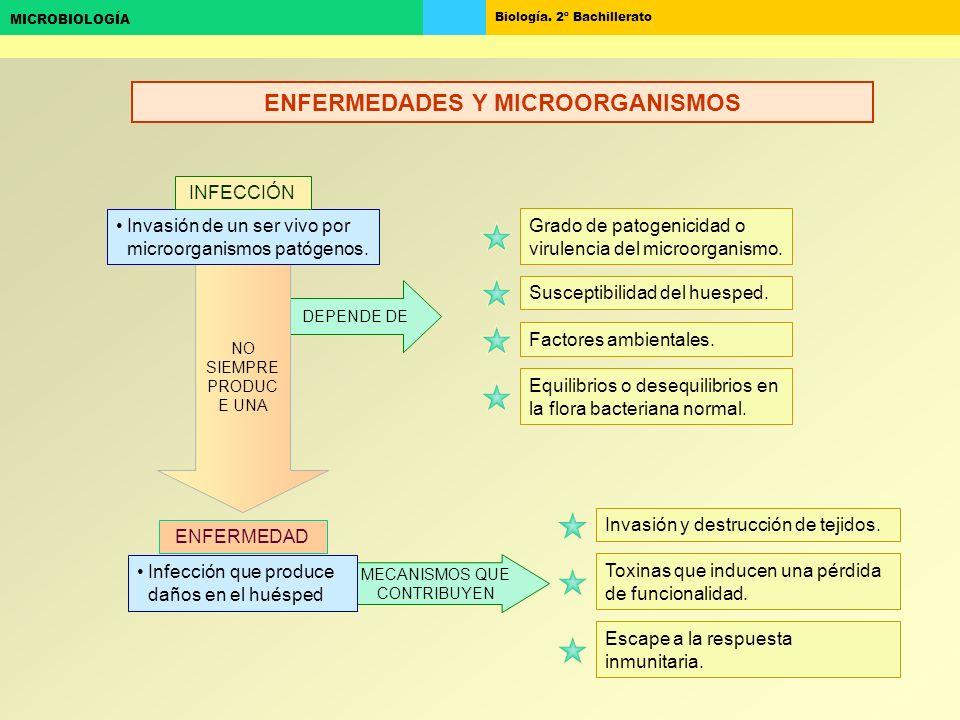 ENFERMEDADES Y MICROORGANISMOS