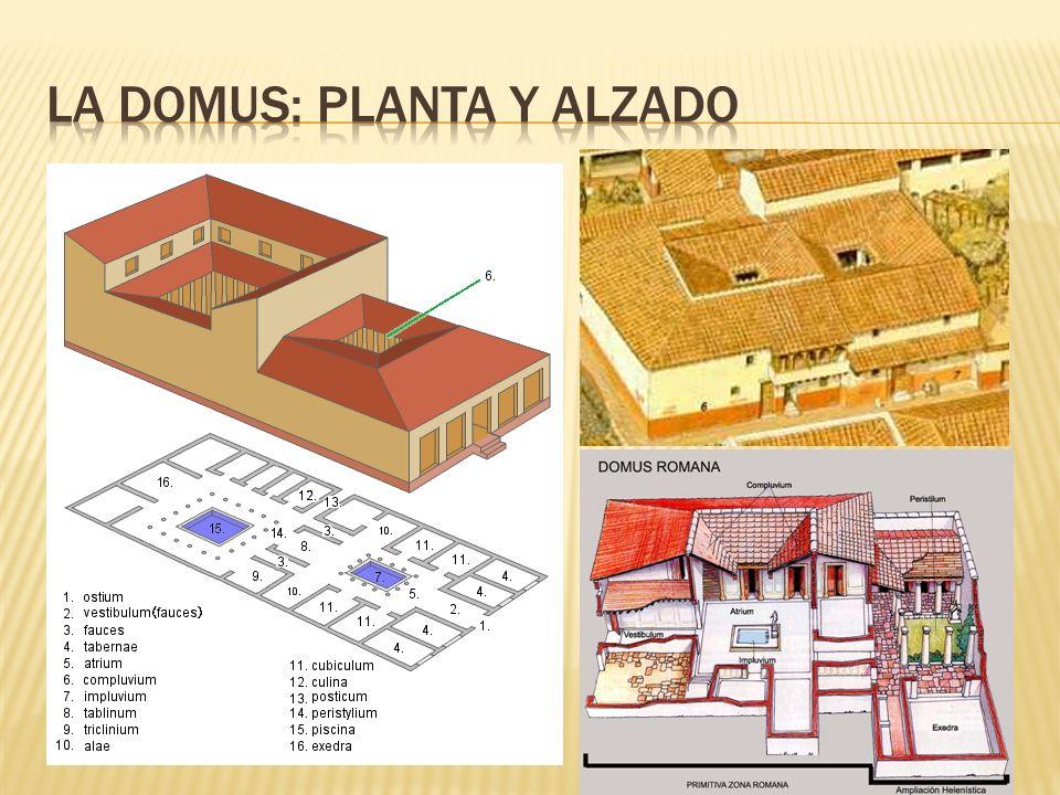La domus: planta y alzado