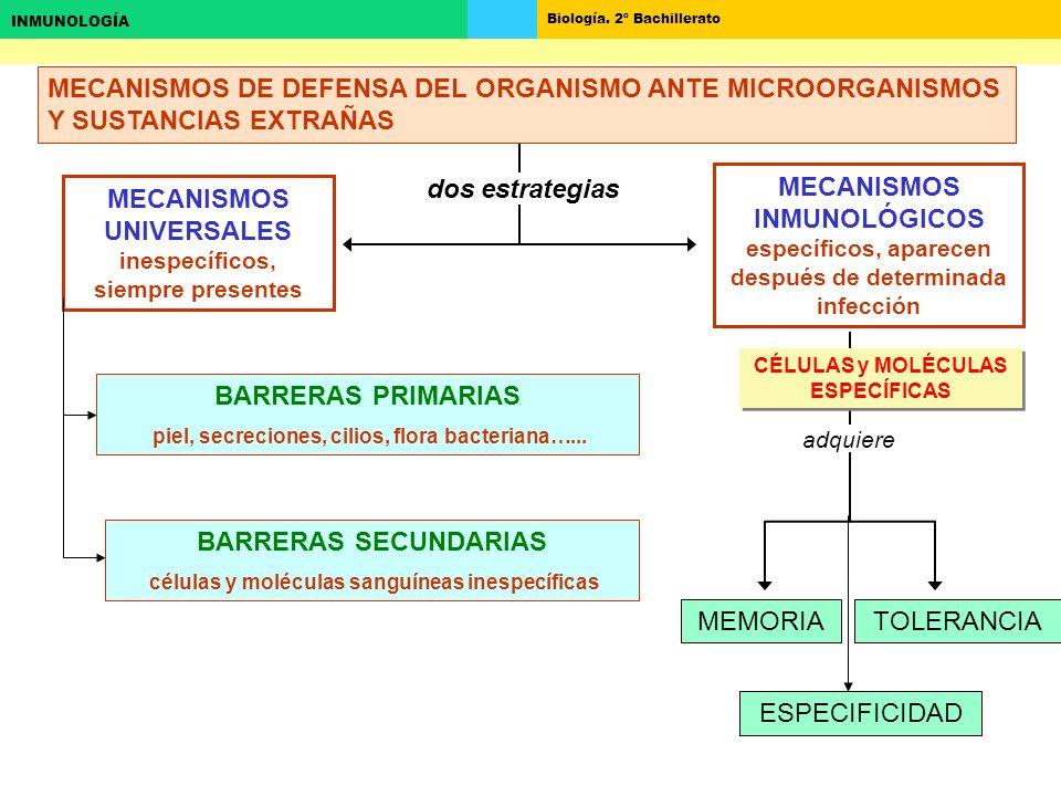 MECANISMOS UNIVERSALES inespecíficos, siempre presentes