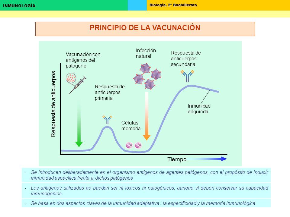 PRINCIPIO DE LA VACUNACIÓN